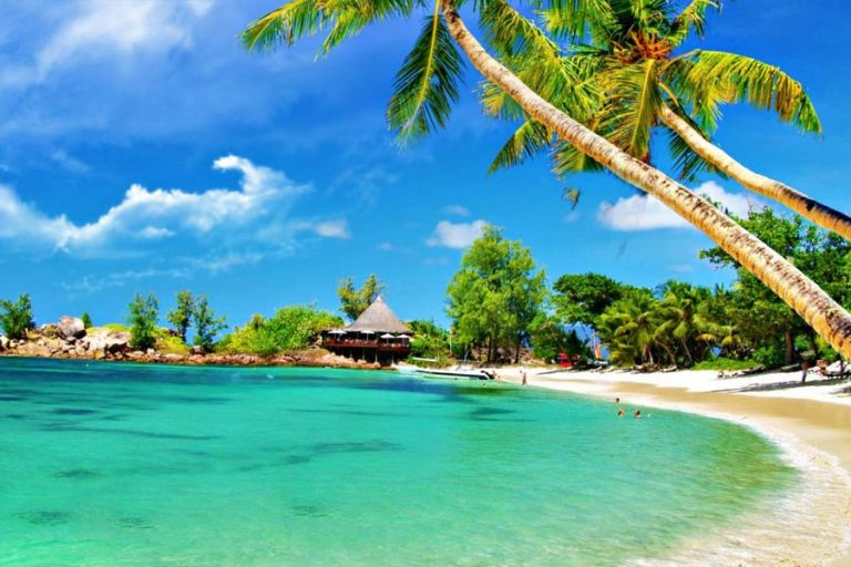 Goa Tours And Travels