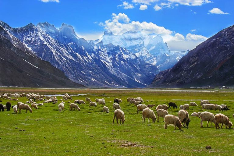 Zanaskar Valley Tour with Ladakh and Kashmir