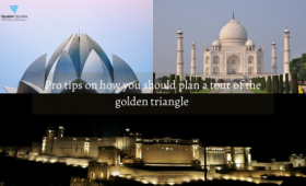 Pro tips on how you should plan a tour of the golden triangle